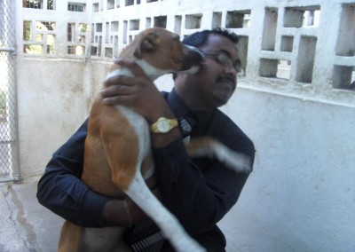 Krishnen gets a big thank you from one of the dogs